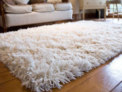 Rugs For Sale Online With Free Uk Delivery Rugs Direct