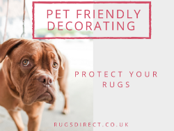 Pet-Friendly Decorating