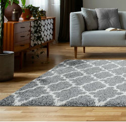 Charles DN1001 Silver Rug