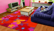 Colourful Summer Rugs
