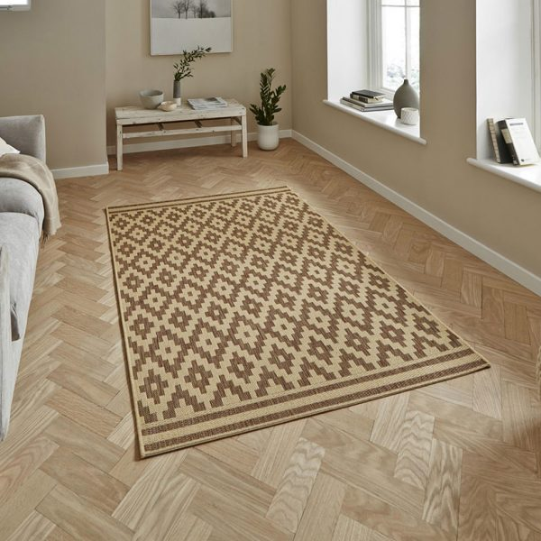 Cottage CT5581 Natural Brown Rug