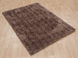 Asiatic Spiral Taupe Rug