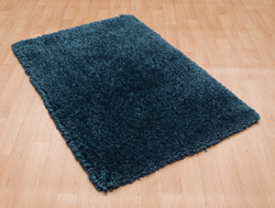 Asiatic Spiral Navy Rug