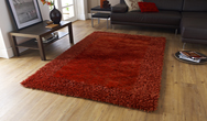 Sable 2 Burnt Orange Rug