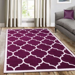 Trendy Purple with Border Rug