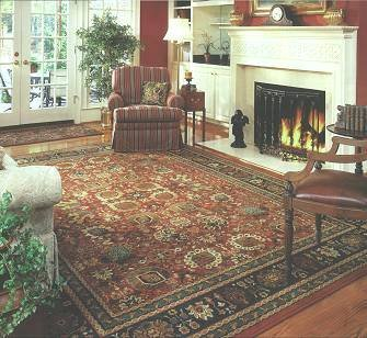 Rug infront of open fire and French windows